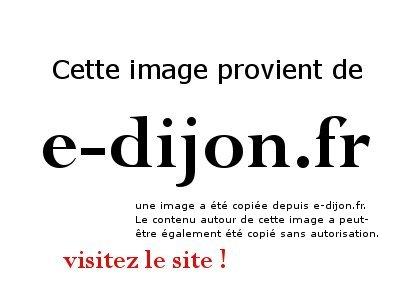 salon du bien etre 2008 à Dijon Salon-bien-etre-dijon